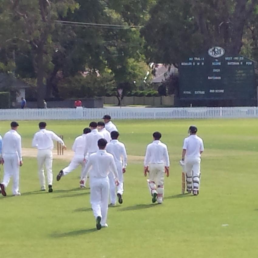 Rep Cricket 1